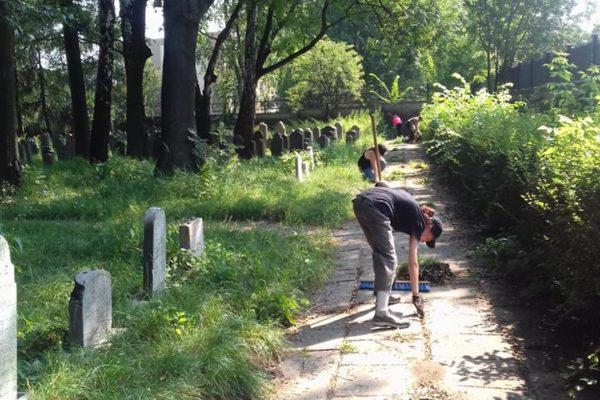 Erhaltungsarbeiten auf dem jüdischen Friedhof - SoLa Oswiecim 2018